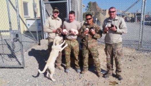 Former Pentucket Student Serves In Afghanistan