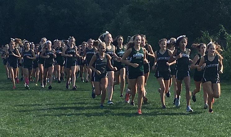 The Exhilarating Sport that is Girls' Cross Country