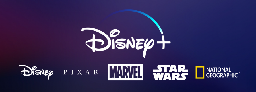 (Photo Source: disneyplus.com)