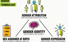 Navigation to Story: A Commentary on Sexism, Homophobia, and Gender Expression